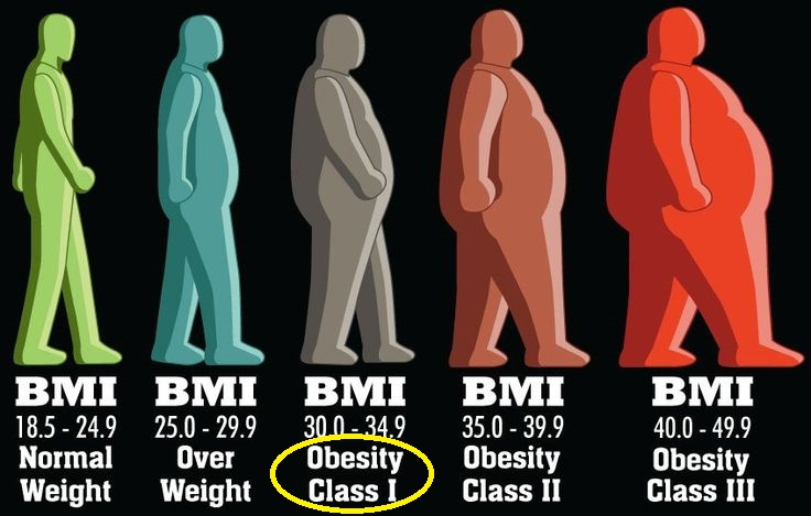 Why America is Getting Fatter: The Scary Truth about Obesity